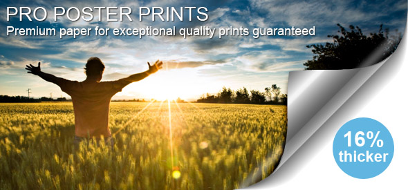 Purchase Pro-Poster Prints