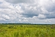 Image of High cumulus rain clouds over grassland and forest.