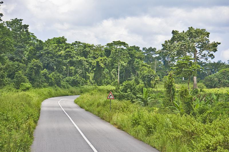 A stretch of modern tarmacadam road snakes through the thickly forested jungle.