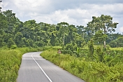 caption: A stretch of modern tarmacadam road snakes through the thickly forested jungle.