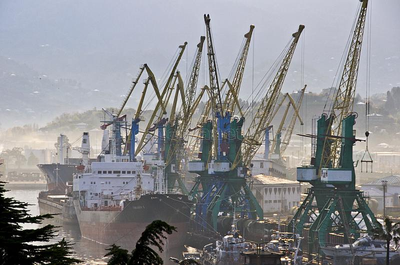 Ships wait for unloading amidst a forest of cranes at the docks.