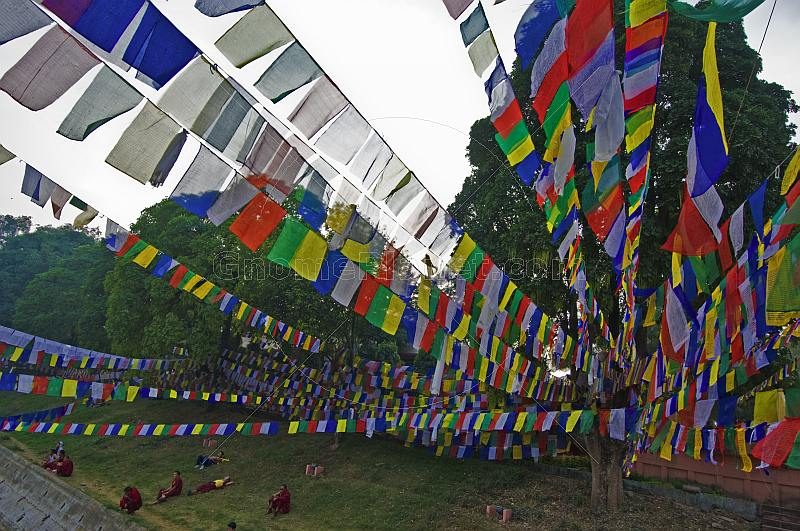 Buddhist monks rest under the shade of trees and prayer-flags.