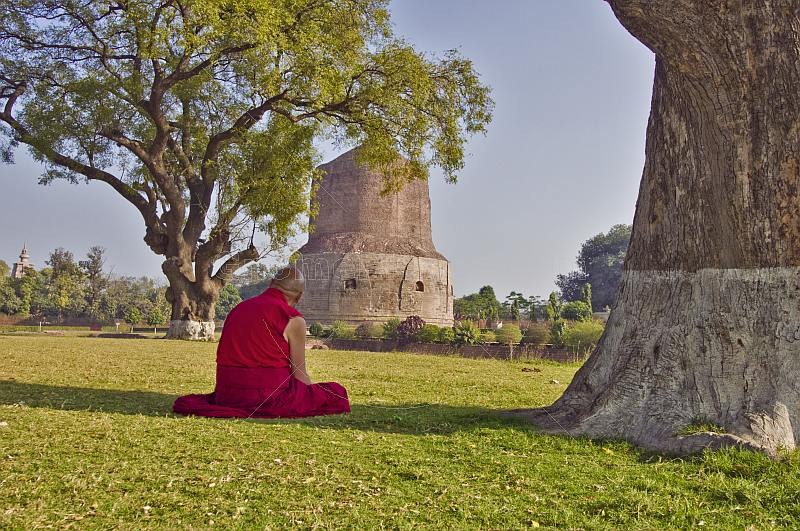 Buddhist monk sits in silent meditation before the 5thC Dhamekh Stupa at Sarnath.