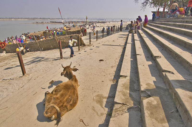 An old man watches pilgrims go for a ritual dip at the bathing ghats on the Saryu River.