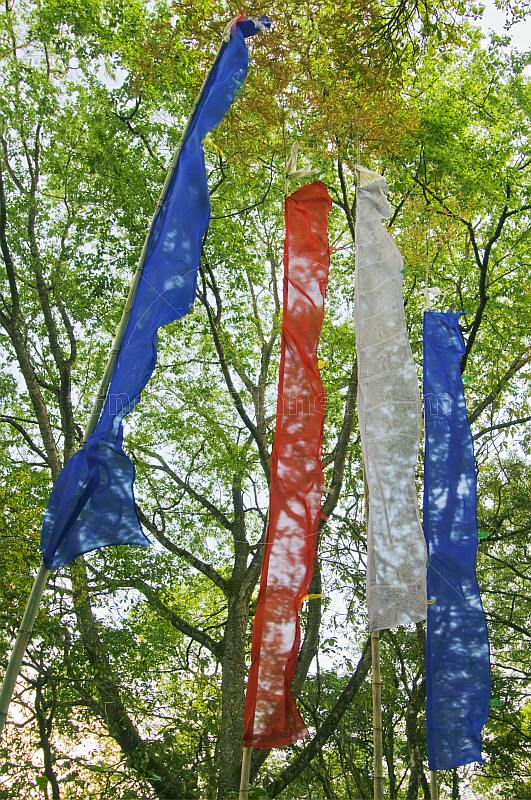 Red white and blue Prayer flags in forest near the Do-drul Chorten.