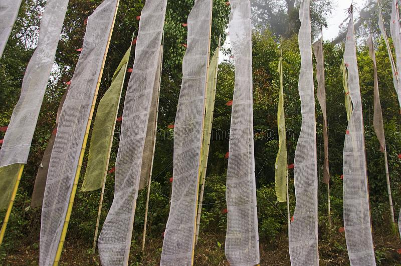 White and yellow prayer flags at the Pemayangtse Monastery.