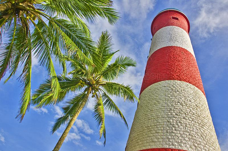 Red and white bands of Vizhinjam Lighthouse tower, with coconut palm.