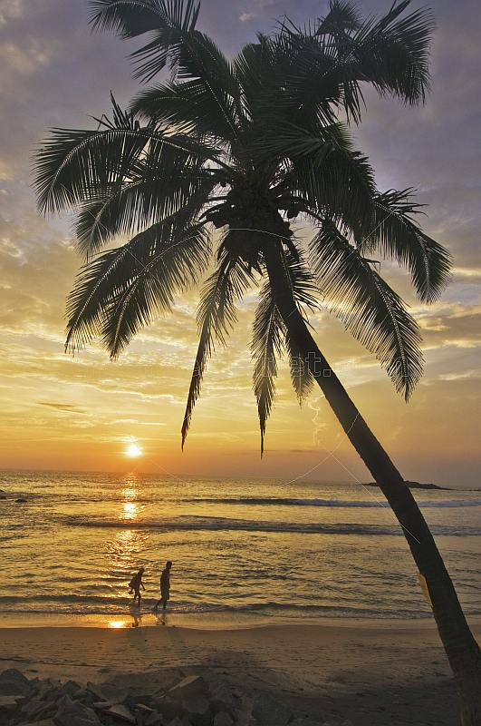 A young couple walk along the beach at sunset, framed by a coconut palm tree.