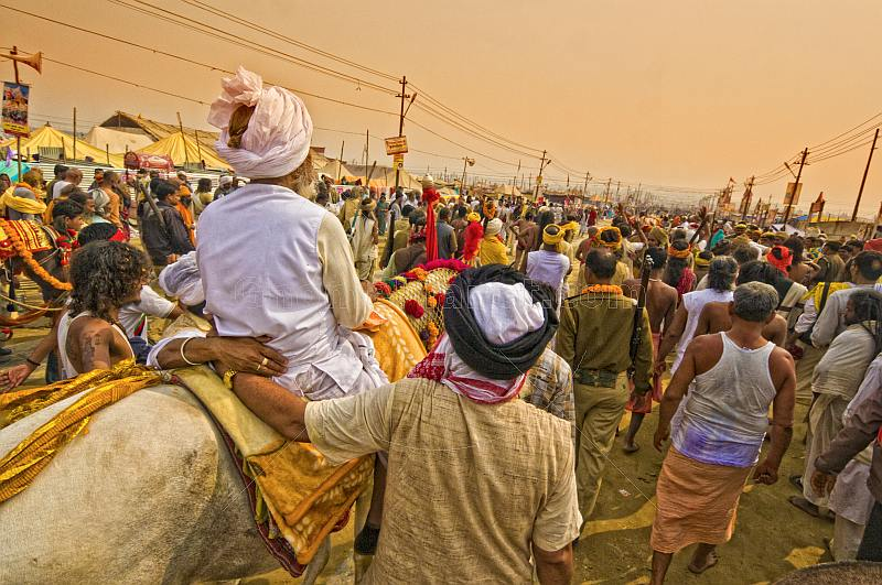 Hindu holy man is supported on horseback through dense  Kumbh Mela crowds.