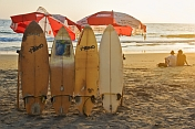 India, Kerala, Kovalam. Surfboards on Lighthouse Beach as the sun goes down.