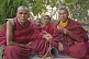 Buddhist monks gather for a puja at the Mahabodhi Temple.