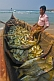 A fishermen rests in his boat full of fish.