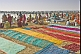 Colorful saris laid out to dry on reed-covered banks of Ganges River near the Sangam.
