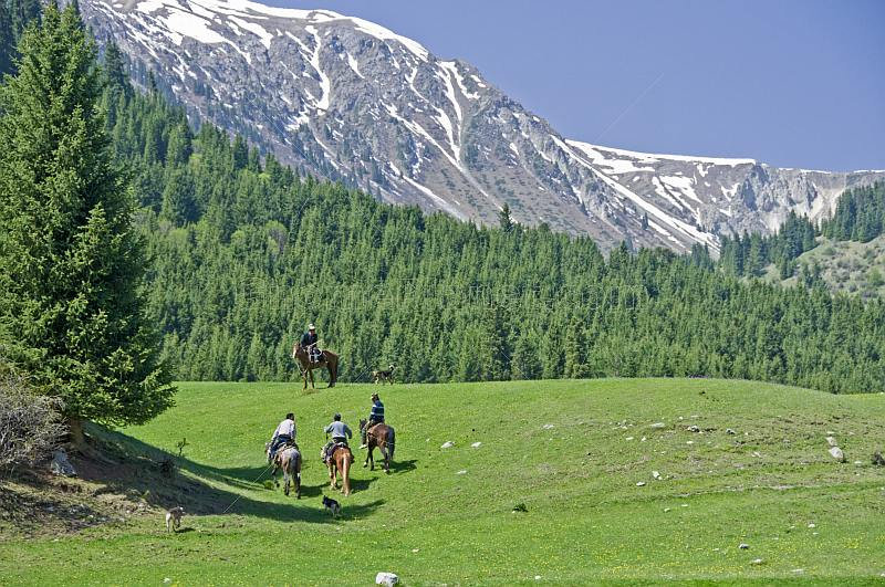 Four Kyrgyz horsemen in the Sarycat Ertas Nature Reserve.