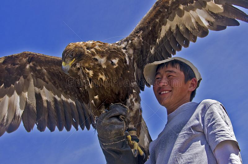 Eagle and Mongolian bird-handler.