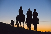Three Mongolian horsemen and dog riding into the sunset.
