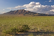 Mongolian grassland and mountains.