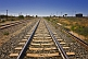 Australian Rail Tracks Converge At The Distant Horizon
