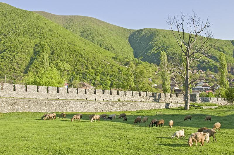 Sheep graze within the walls of the \\'Xan Sarayi\\', or Khan\\'s Palace.