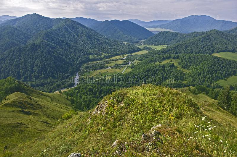 Mountains and forests of the Altai Republic.