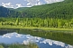 Image of Forested mountains and river of the Altai Republic.