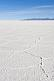 Image of Naturally occurring salt ridge patterns on the Uyuni Salt Flats.