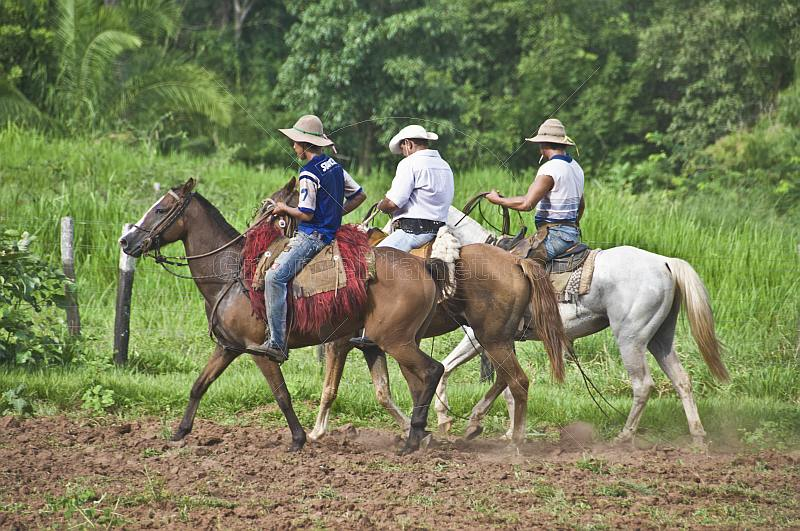 Three Brazillian cowboys on horseback.