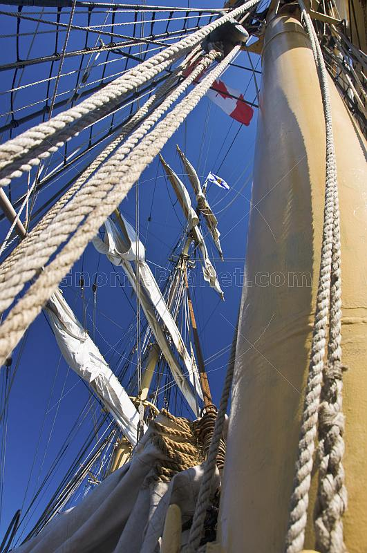 Rope masts and rigging of the tallship 'Picton Castle'.