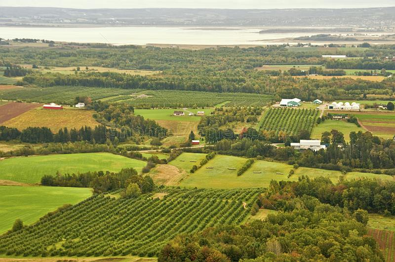 Forests and apple orchards contrast rolling farmland next to the Minas Basin.