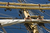 Crew of the tallship 'Picton Castle' work aloft to stow sail.