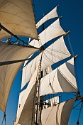 View of the foremast of the tallship 'Picton Castle' with sails full in a strong wind.