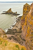 Steep lichen covered cliffs and rocky outcrops at the Cape Split Provincial Park Reserve.