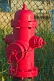 A recently painted red fire hydrant.