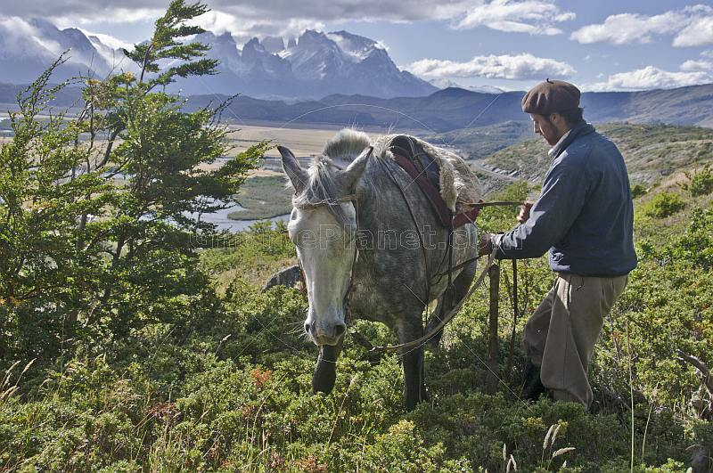 A break from horse riding in the Parque Nacional Los Glaciares.