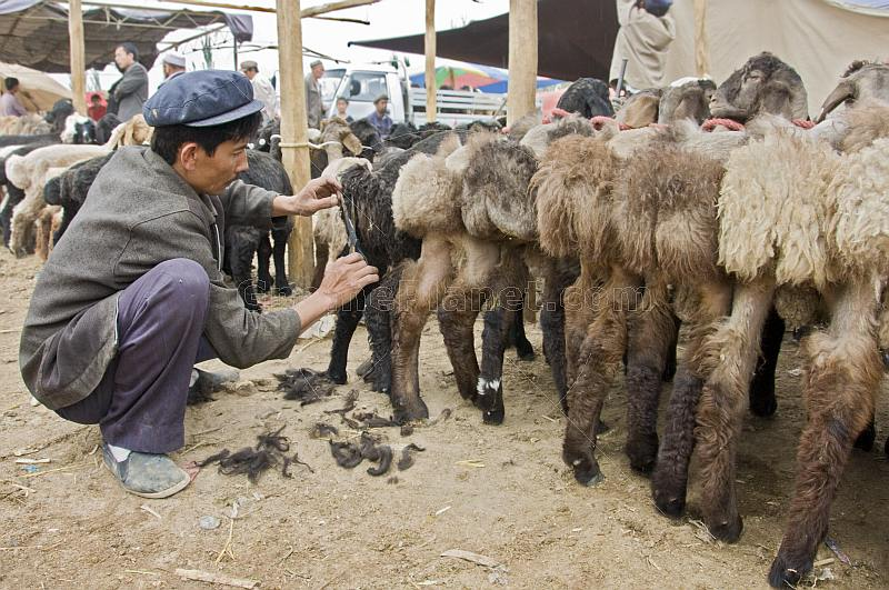 Uighur man trimming sheep tails at the Sunday Market.