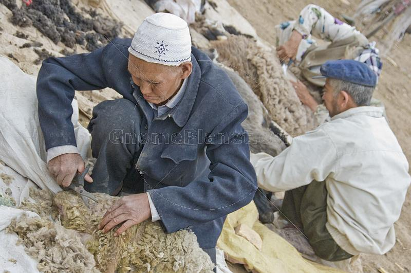Two Uighur man shearing sheep at the Sunday Market.