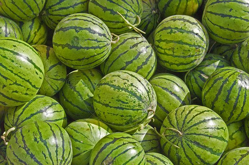 Green water melons.