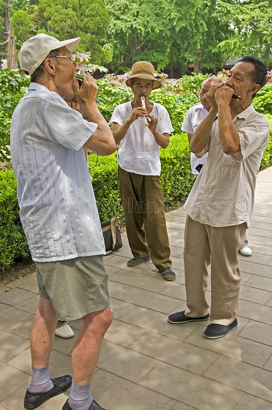 Chinese musicians practise in Jingshan Park.