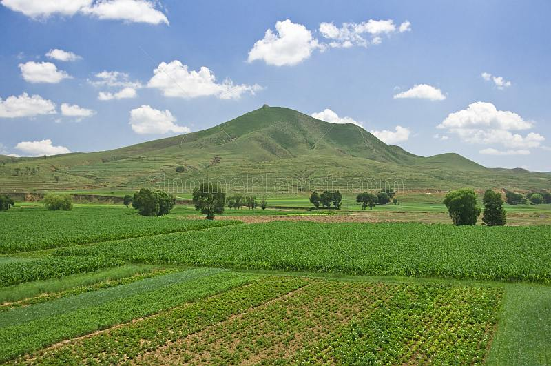 Potatoes, corn, and other vegetable crops grow in fields near the mountains.