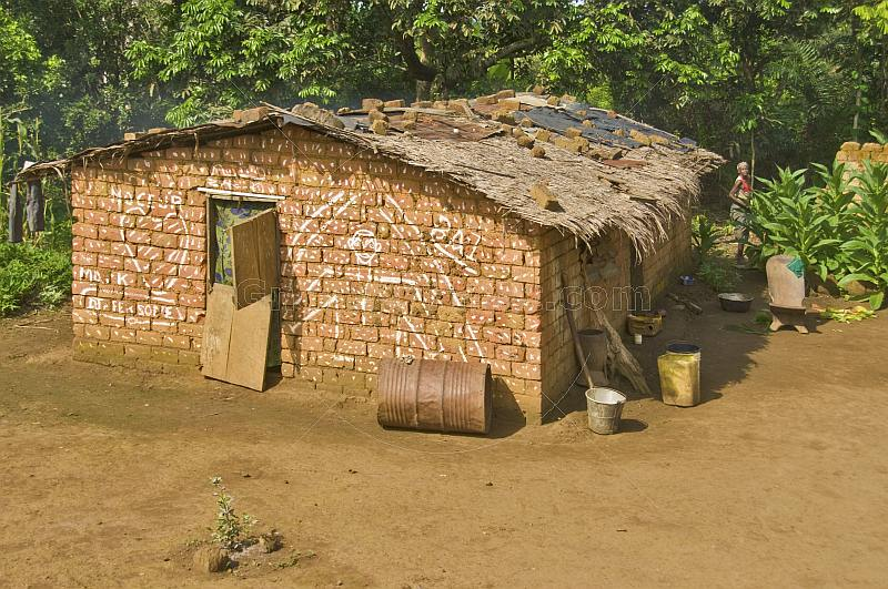 Decorated mud brick house in jungle clearing.