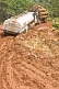 A timber truck tows a fuel tanker through a muddy and deeply rutted section of logging road.
