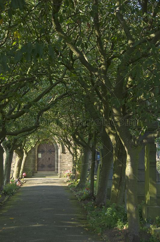 Cherry-tree covered walk to the Emmanuel Shelley stone church.